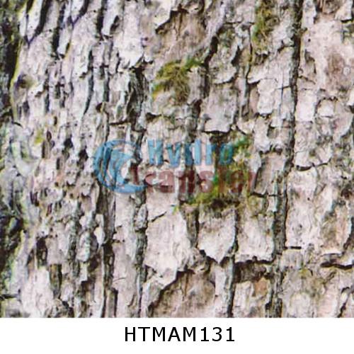 HT MAM131